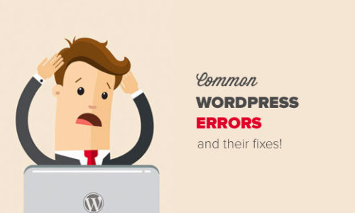 commonwordpresserrors
